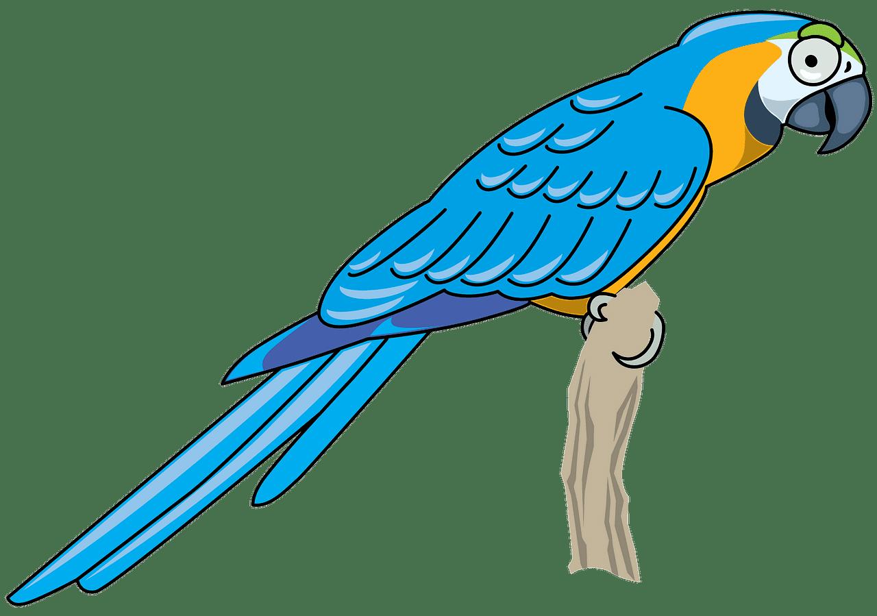 Download Parrot clipart transparent