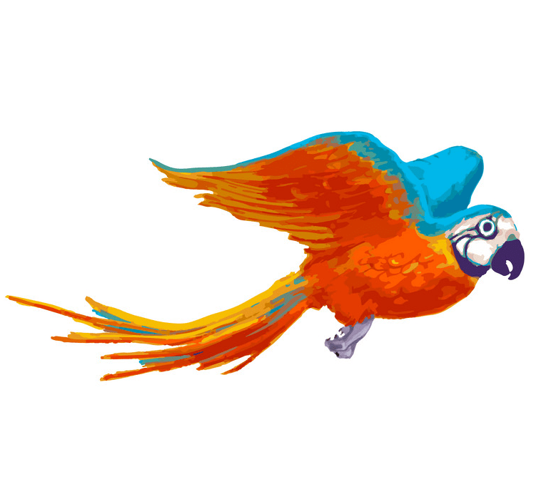 Flying Parrot clipart free