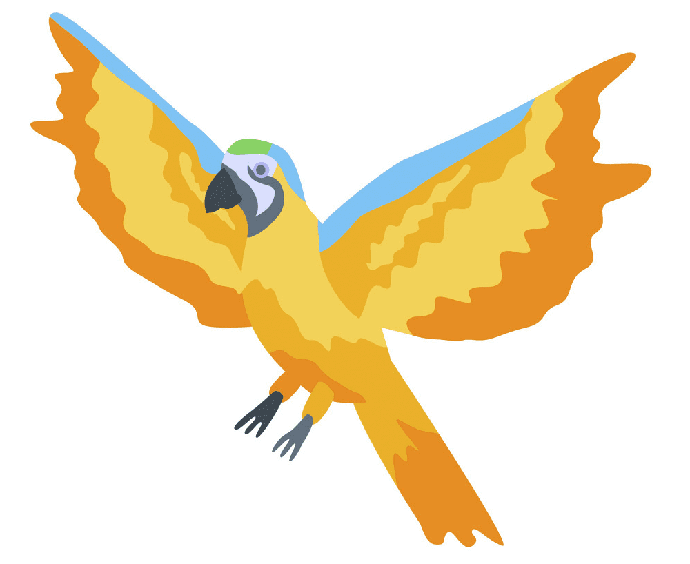 Flying Parrot clipart image