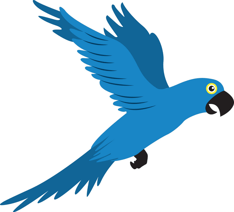 Flying Parrot clipart images