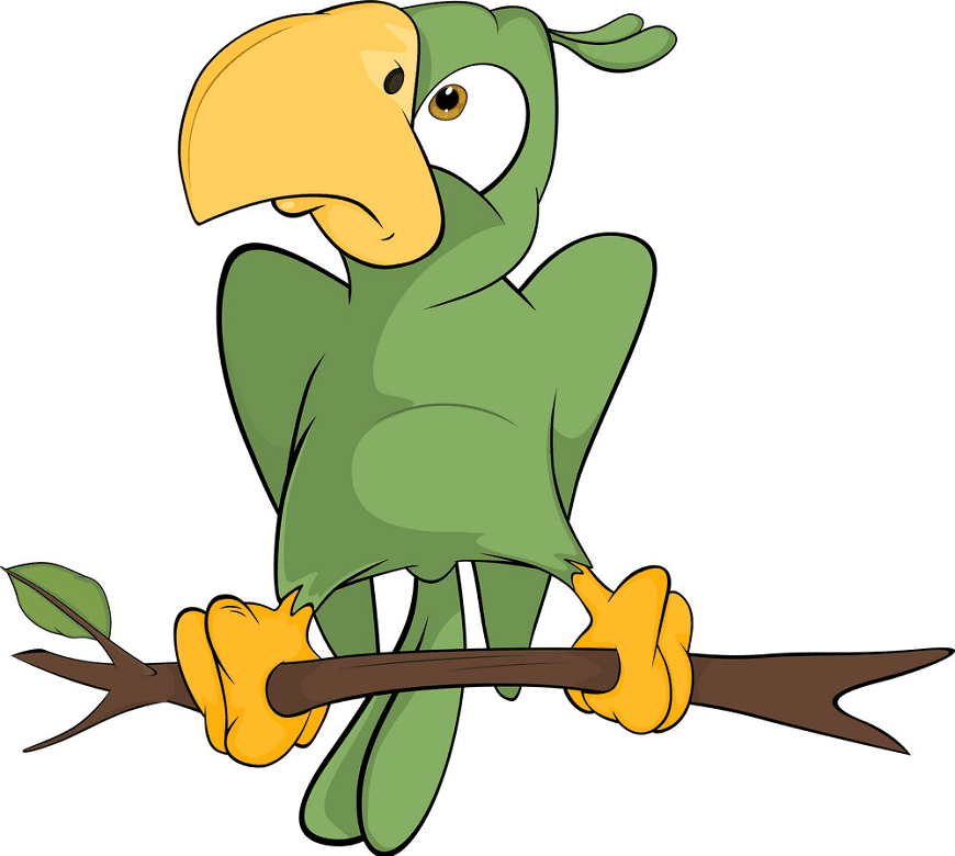 Free Parrot clipart for kids
