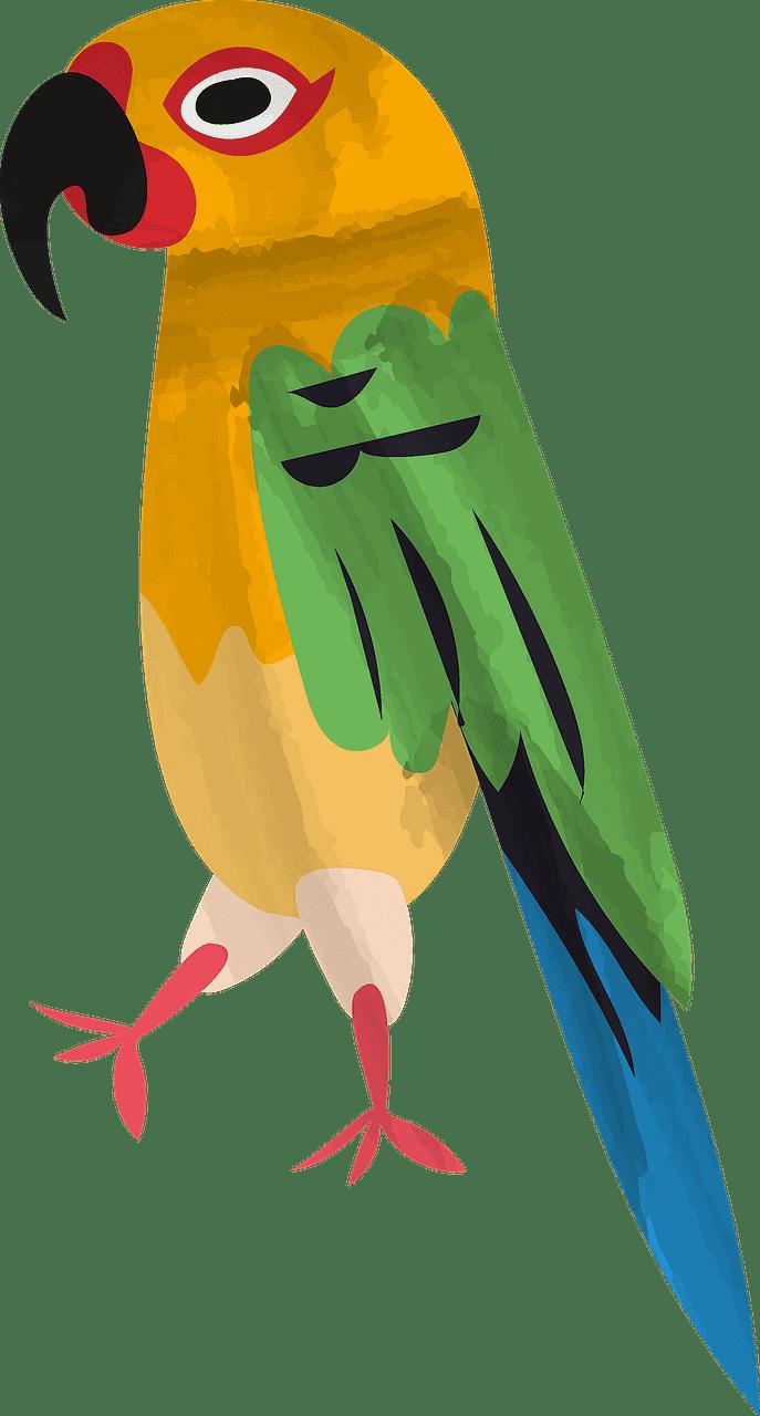 Free Parrot clipart transparent for kids
