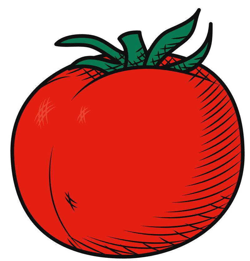 Free Tomato clipart png