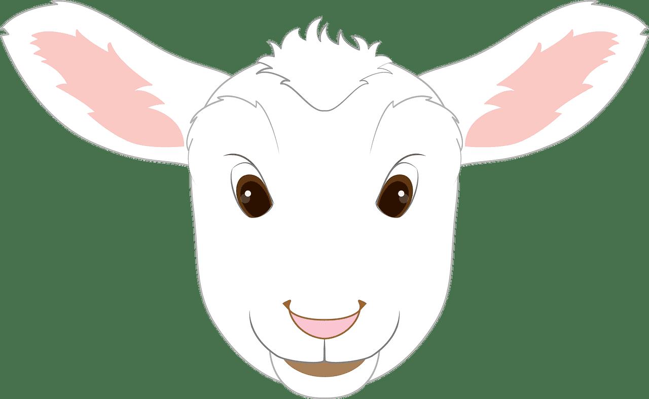 Lamb Face clipart transparent