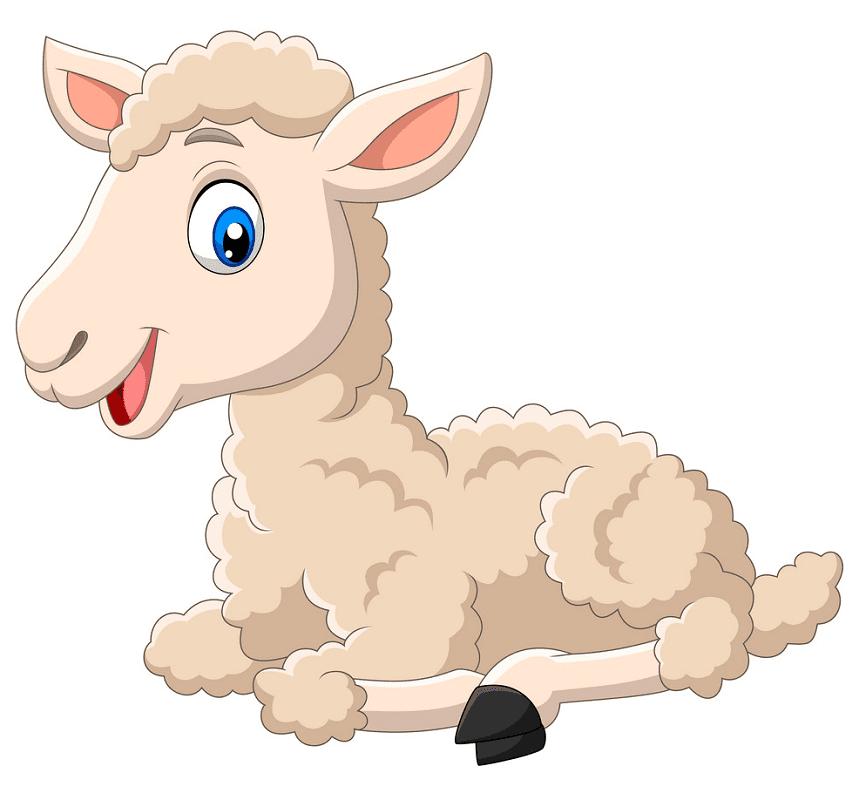 Lamb clipart 5