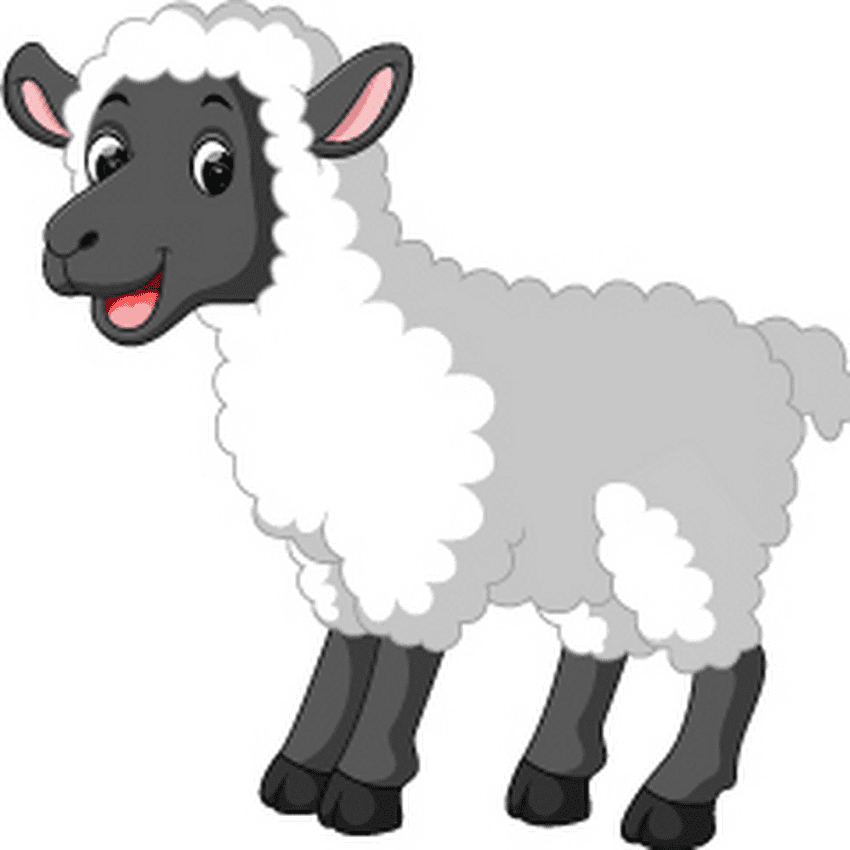 Lamb clipart for free