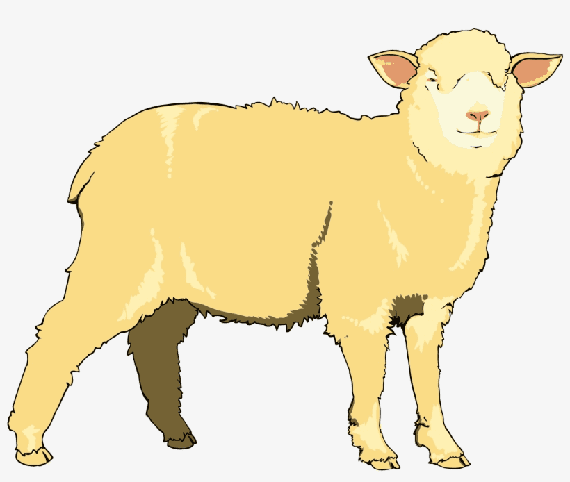 Lamb clipart free 10