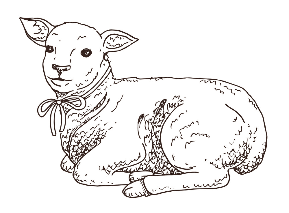 Lamb clipart free for kids
