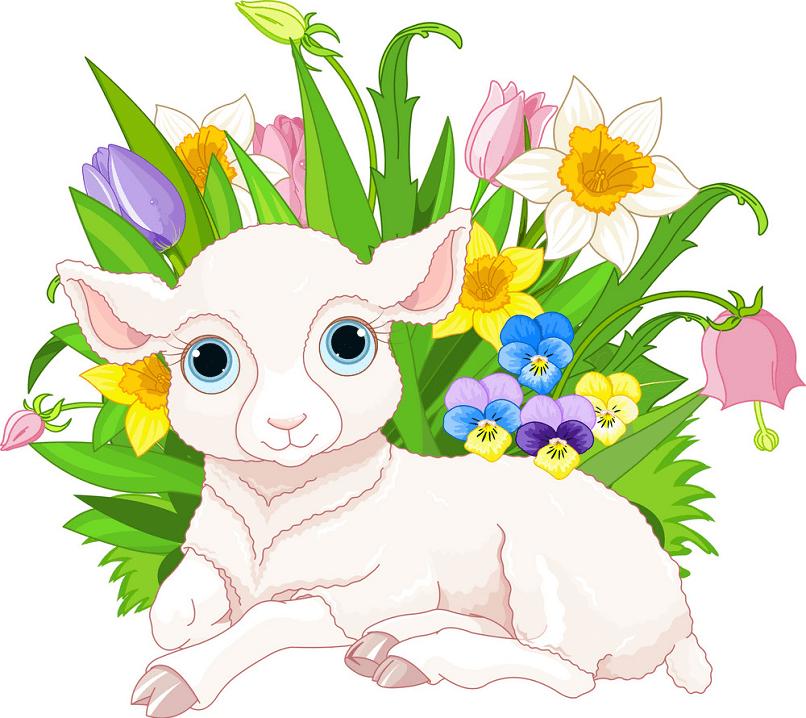 Lamb clipart free images