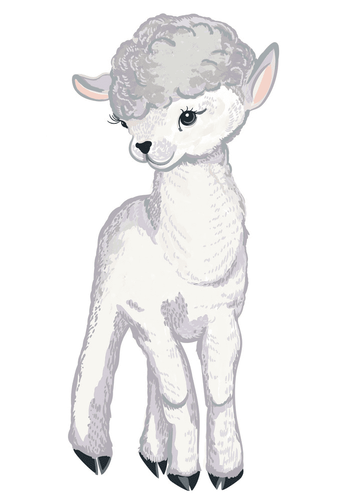 Lamb clipart free picture