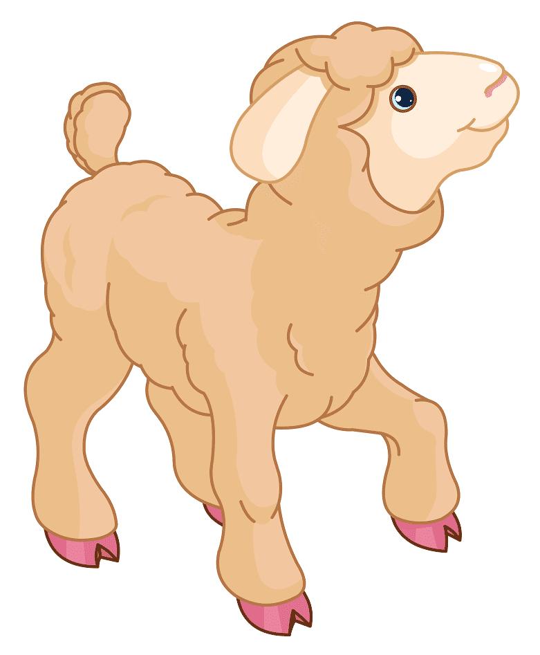 Lamb clipart png 1