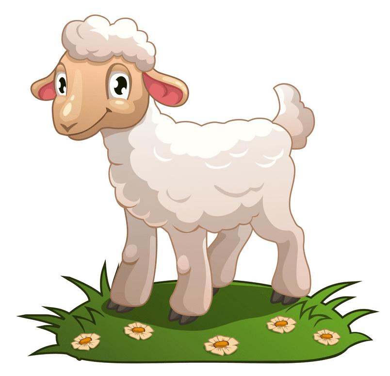 Lamb clipart png download