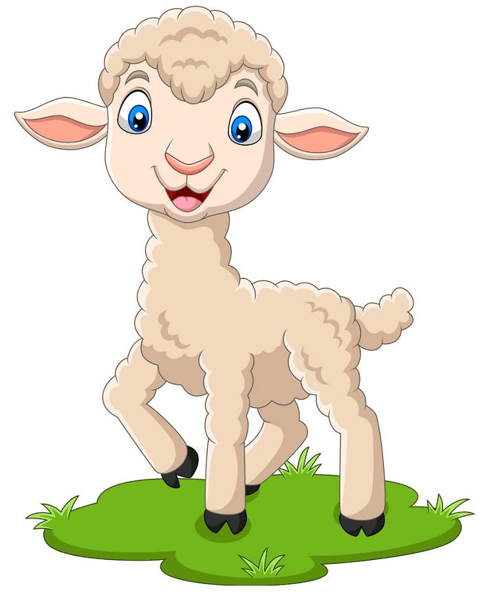 Lamb clipart png image