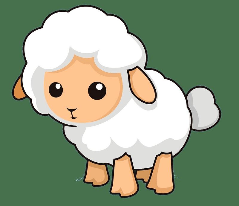 Lamb clipart transparent 10