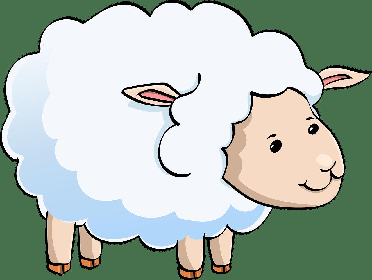 Lamb clipart transparent 13