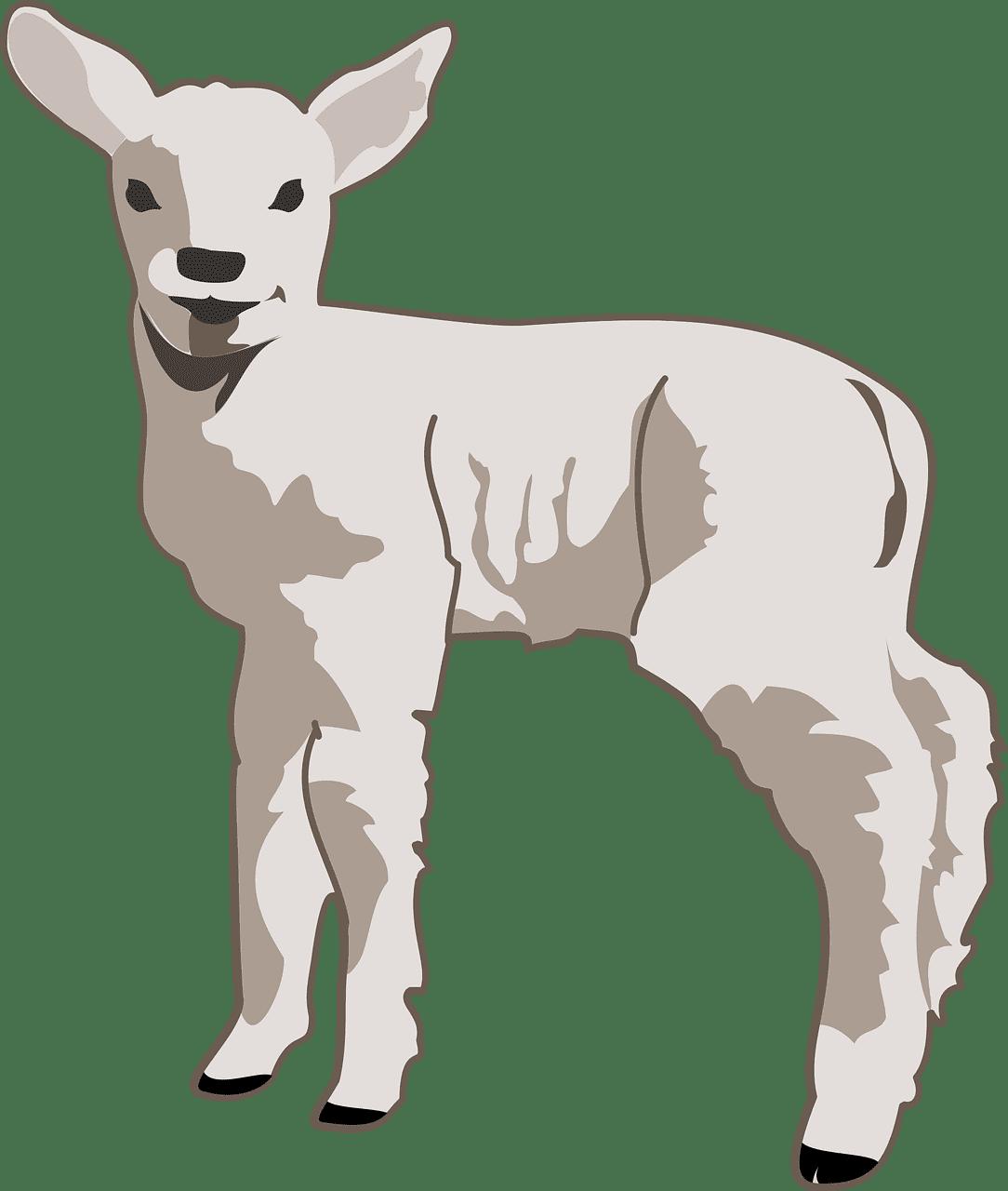 Lamb clipart transparent 4