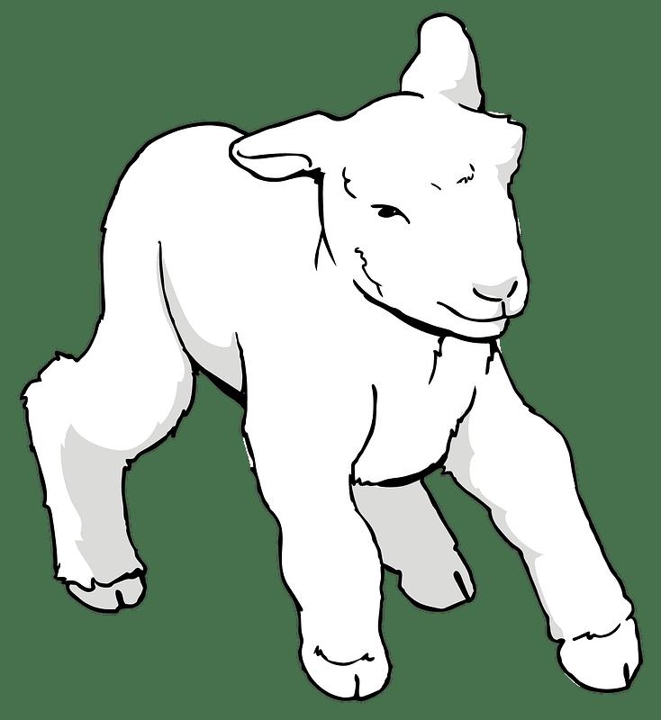 Lamb clipart transparent 5