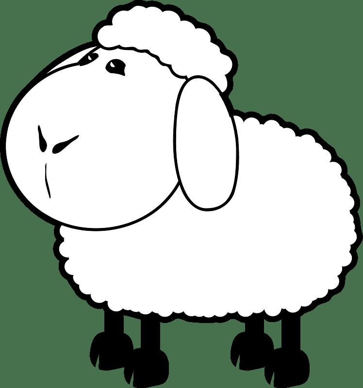 Lamb clipart transparent 6