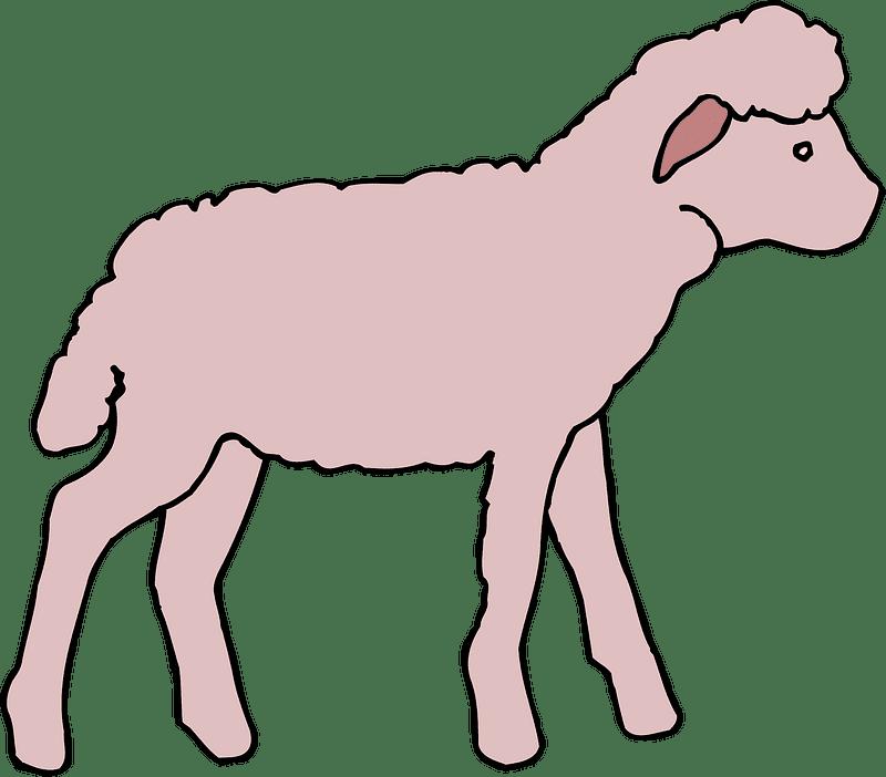 Lamb clipart transparent background 5
