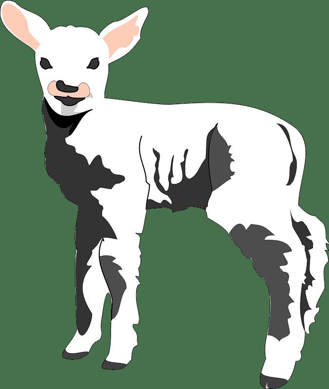 Lamb clipart transparent background 8