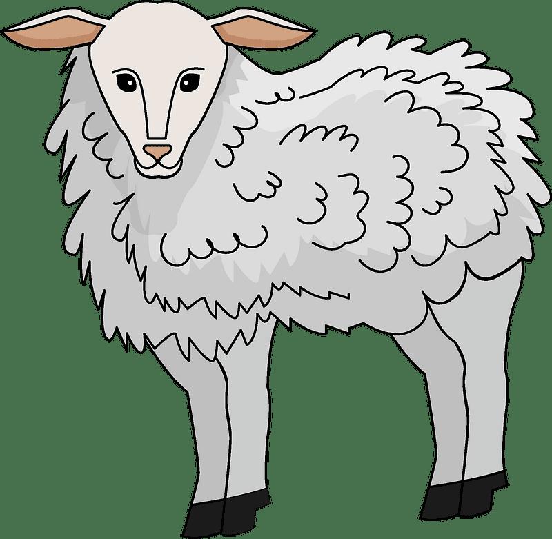Lamb clipart transparent free
