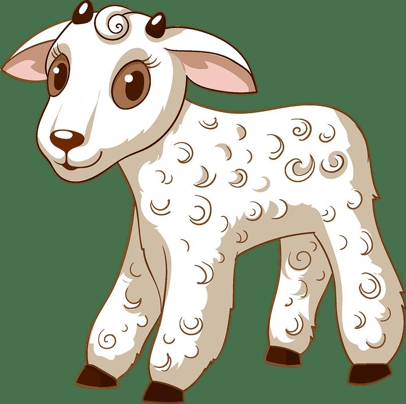 Lamb clipart transparent image