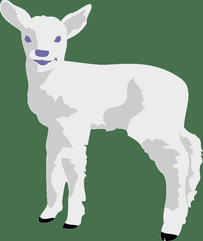 Lamb clipart transparent images