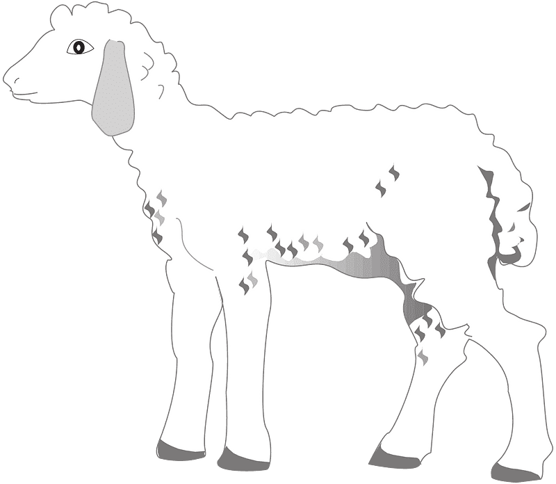 Lamb clipart transparent png