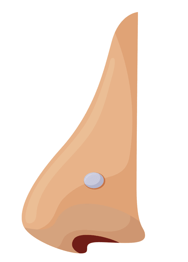 Nose clipart png 9