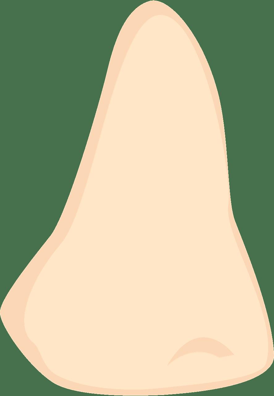 Nose clipart transparent 11