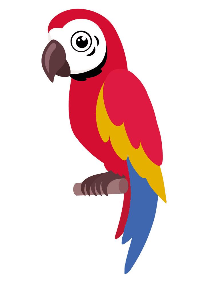 Parrot clipart 1