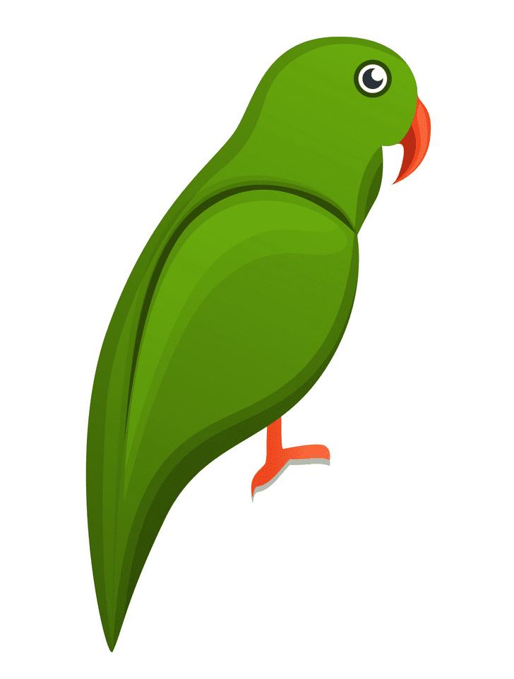 Parrot clipart 2