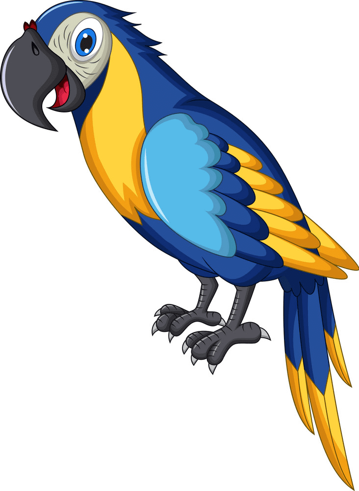 Parrot clipart free for kid