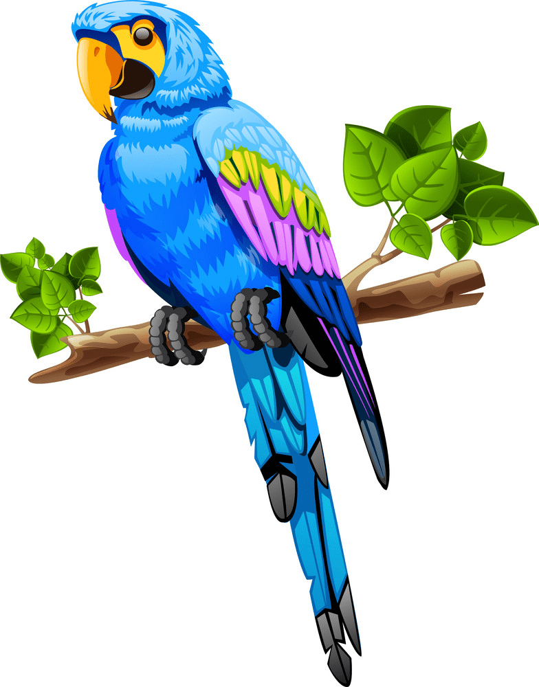 Parrot clipart free for kids