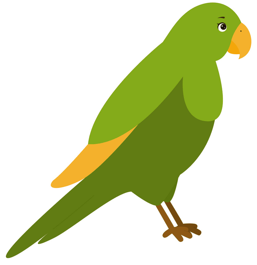 Parrot clipart free picture