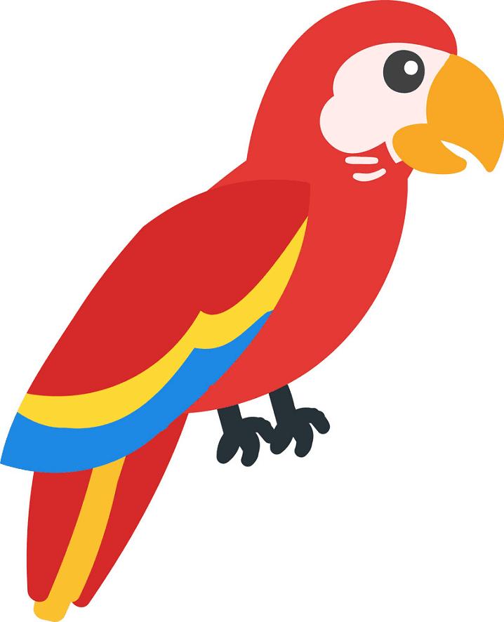 Parrot clipart png download