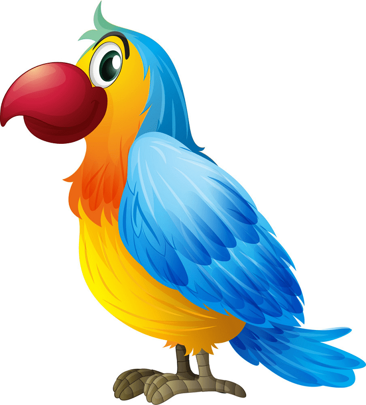 Parrot clipart png for kid