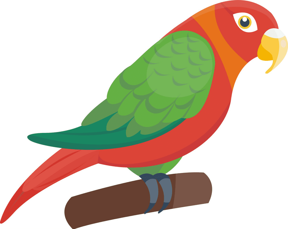 Parrot clipart png for kids