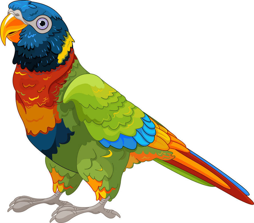 Parrot clipart png free