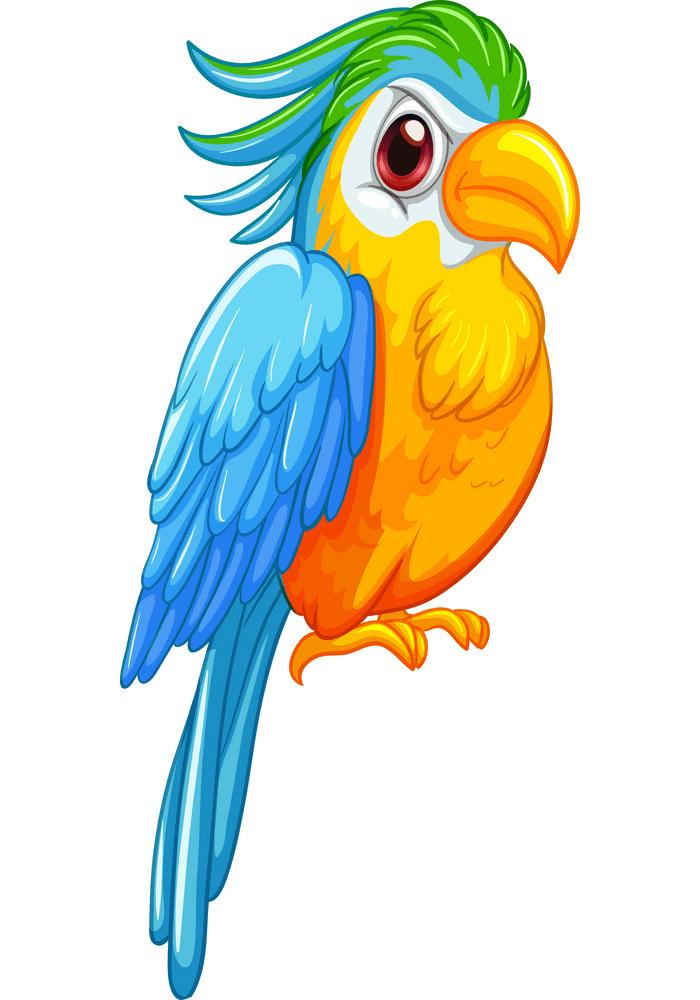 Parrot clipart png picture