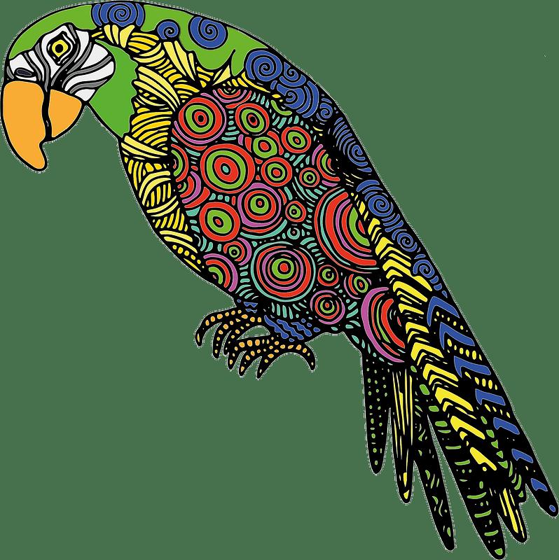 Parrot clipart transparent 1