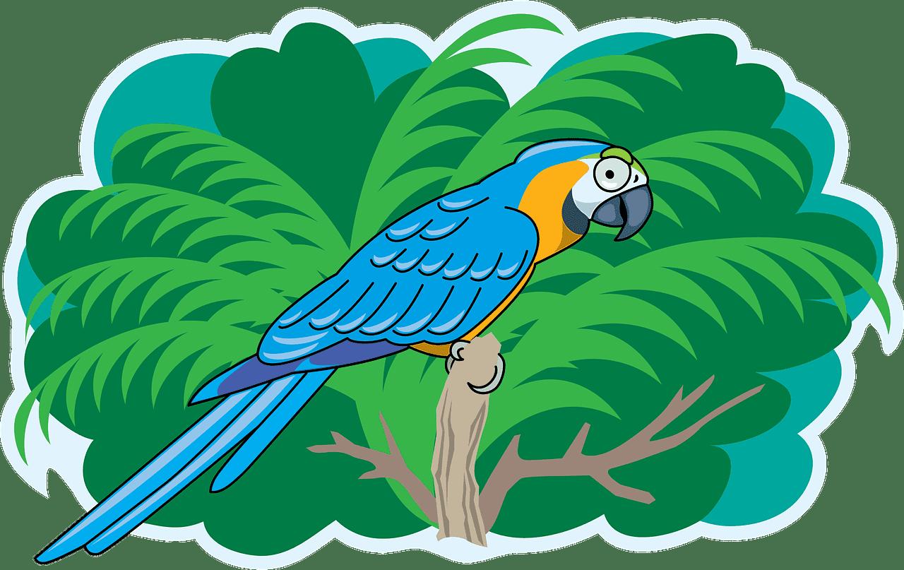 Parrot clipart transparent 4
