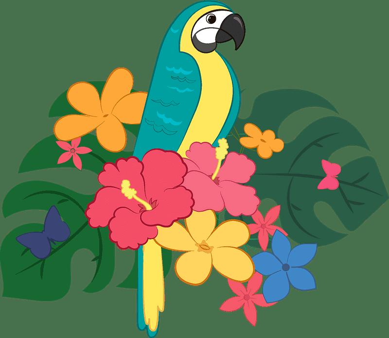 Parrot clipart transparent 6