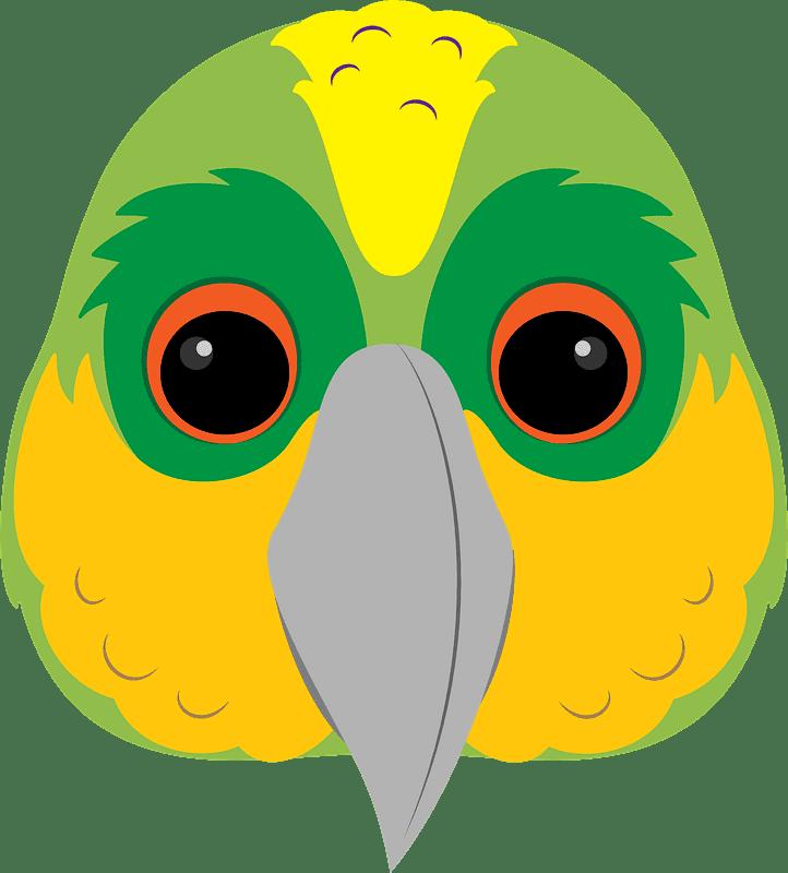 Parrot clipart transparent background 10