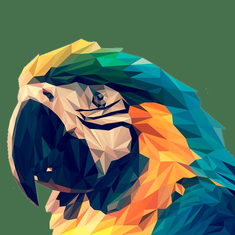 Parrot clipart transparent background 7