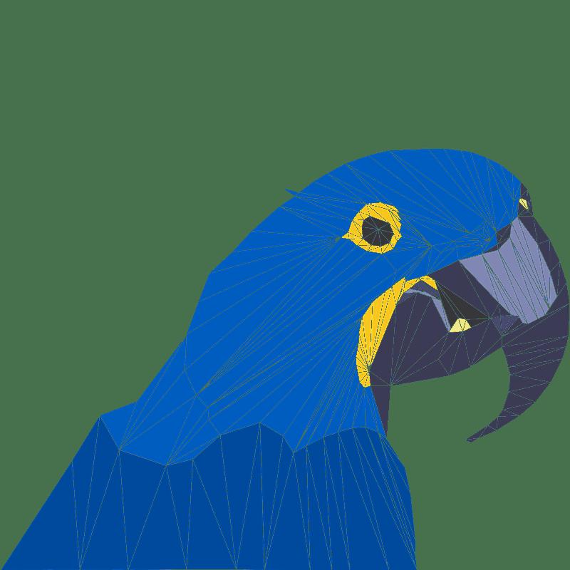Parrot clipart transparent background 8