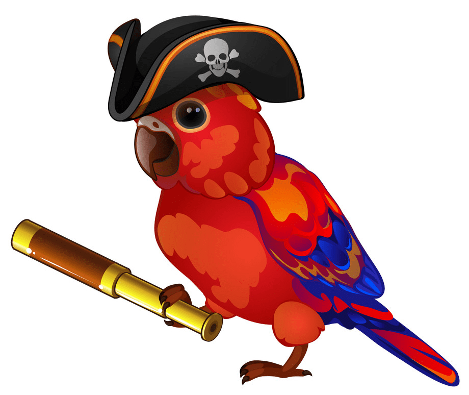 Pirate Parrot clipart png