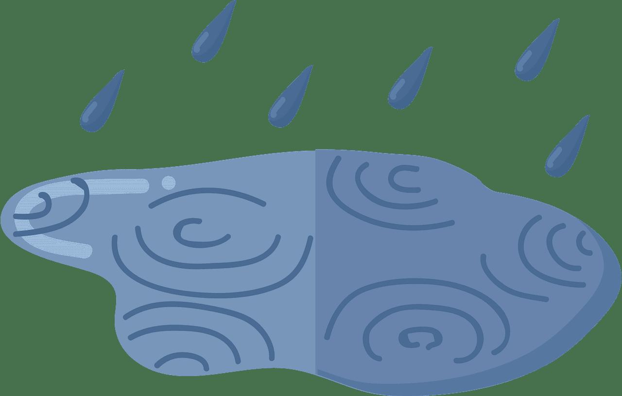 Rain Puddle clipart transparent 1