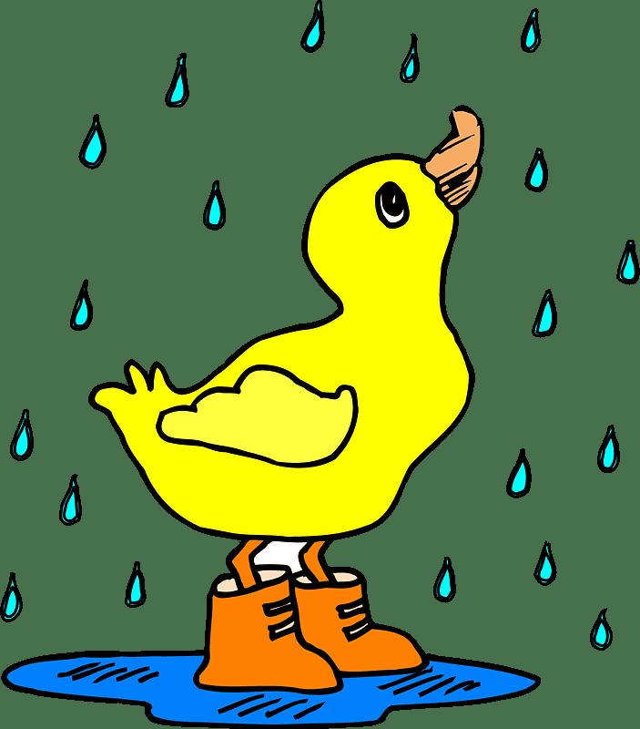 Rain clipart transparent 1