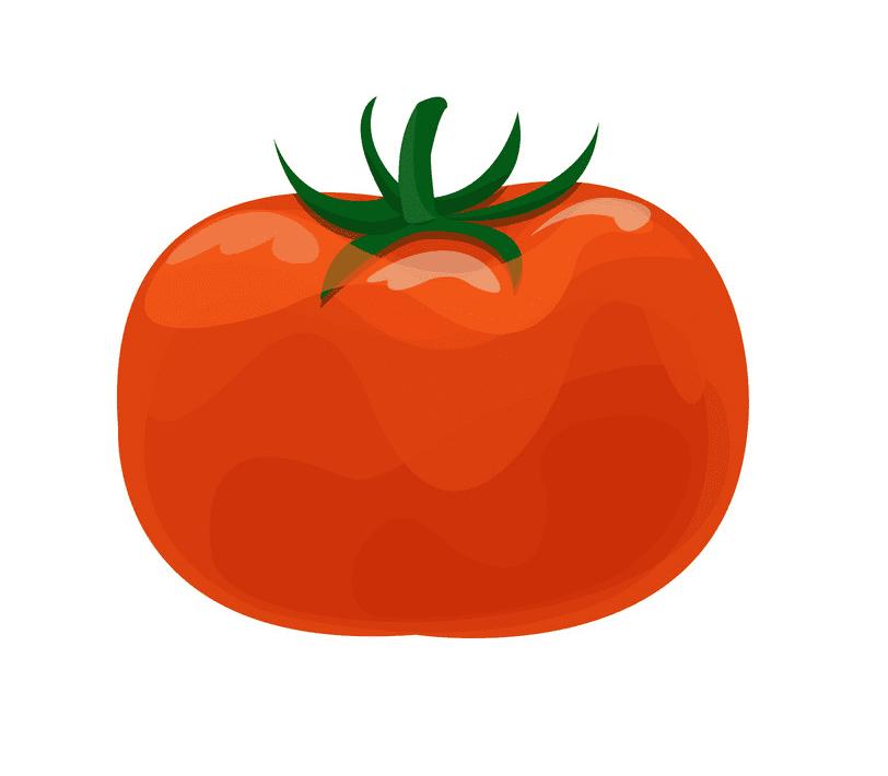 Tomato clipart 1